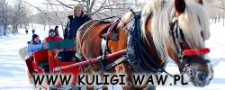 Kuligi Warszawa